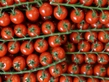 "Russia, Turkey Further Mend Ties With a Tomato Import ""Reset"""