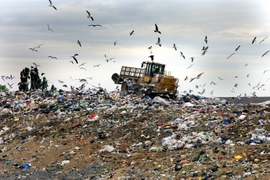 Kazakhstan Plans To Convert Solid Waste To Energy