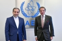 Iranian Top Official Denies 'Disagreements' in Vienna Nuclear Talks