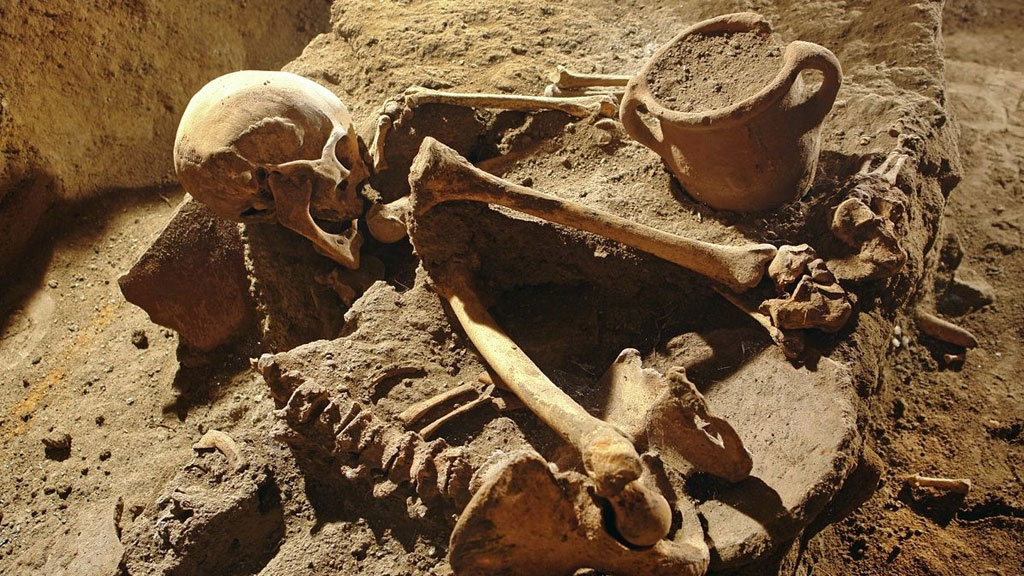 archaeology and the ancient human remains