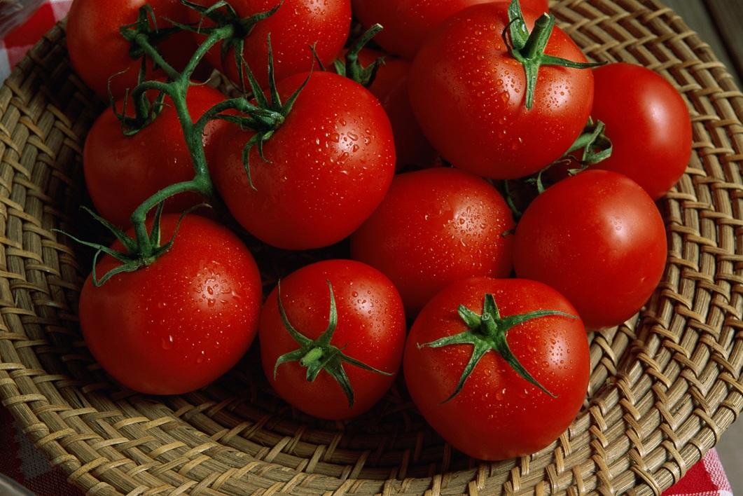 Tomato Industry Tops Azerbaijani Non-Oil Exports, Supplies